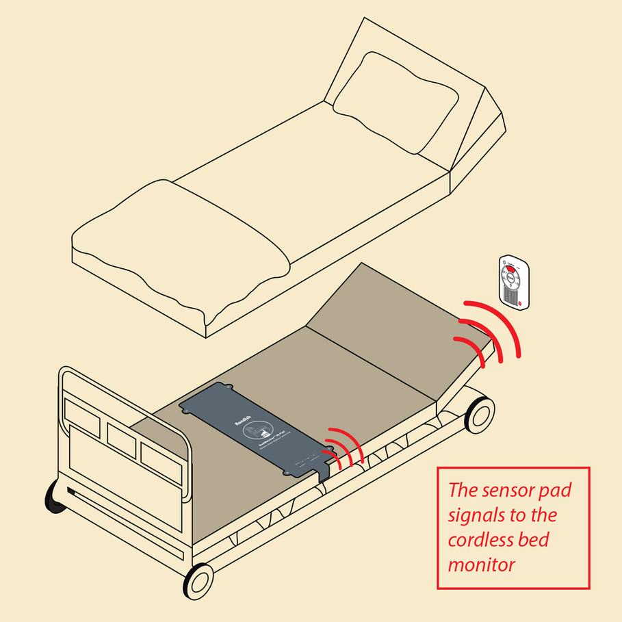 Cartoon_Bed-2.jpg