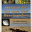 Thumbnail: Activities for the Cape Cod Beachcomber