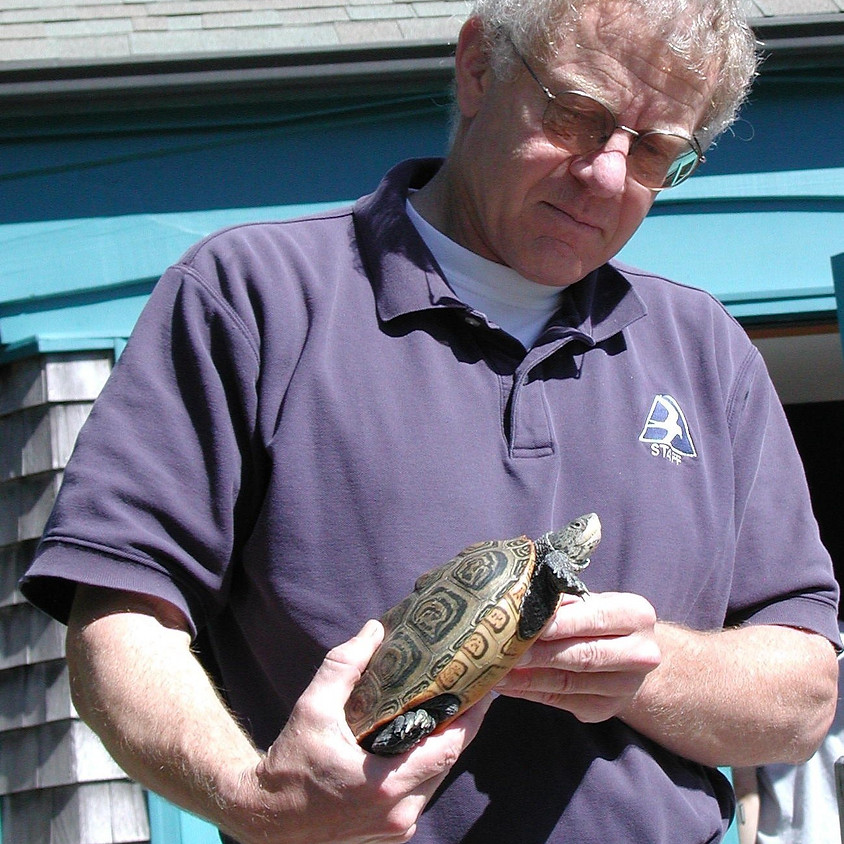 What Change!? Over Fifty Years of Nature Observation on Cape Cod with Robert Prescott