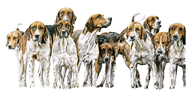 Foxhounds 3  scan smaller.png