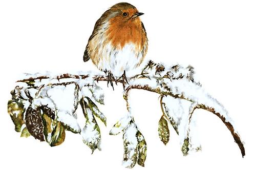 Winter's Delight