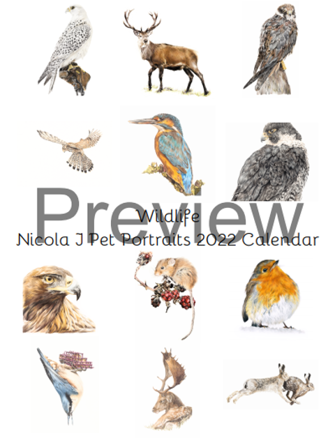 Wildlife  2022 Calendar