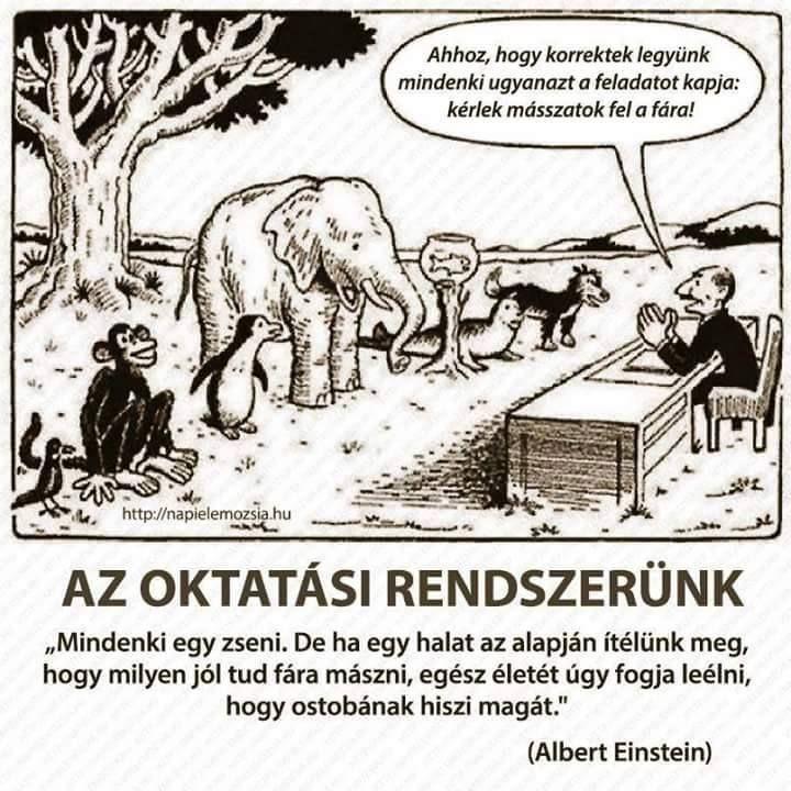 """Egy fa mellett áll sorban egy madár, egy majom, egy pingvin, egy elefánt, egy hal egy akváriumban, egy fóka és egy kutya. Egy asztalnál ülő ember ezt mondja nekik: """"Ahhoz, hogy korrektek legyünk mindenki ugyanazt a feladatot kapja: kérlek másszanak fel a fára!"""". A kép alatt felirat: Az oktatási rendszerünk - """"Mindenki egy zseni. De ha egy halat az alapján ítélünk meg, hogy milyen jól tud fára mászni, egész életét úgy fogja leélni, hogy ostobának hiszi magát.""""  (Albert Einstein)"""