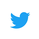 Twitter_Social_Icon_Circle_White.png