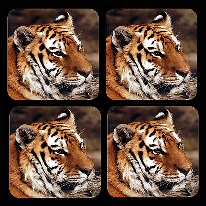 Tiger Coaster Set of 4