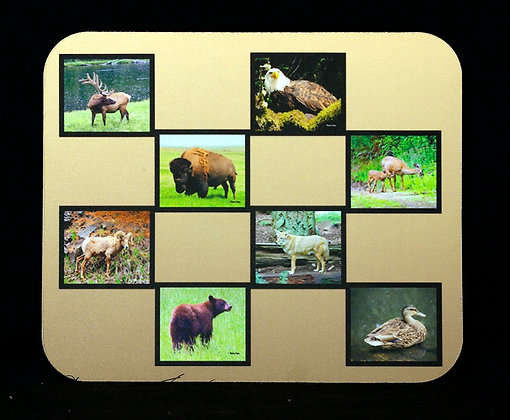 Animals In The Wild Mousepad