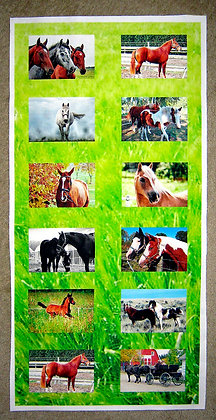 Horses Photo Panel for Quilting or Sewing