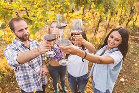 Dry Creek Wine Tasting