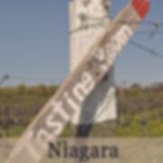 Niagara Wine Region