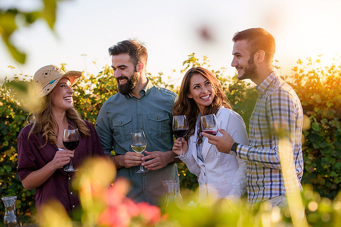 Sonoma Wine Tour Package