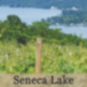 Seneca Lake Wineries
