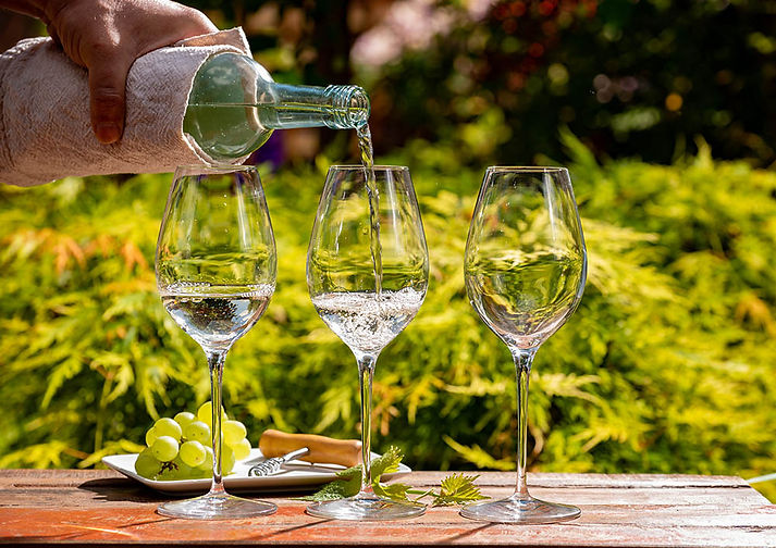 Russian River Valley Wine Tour Package
