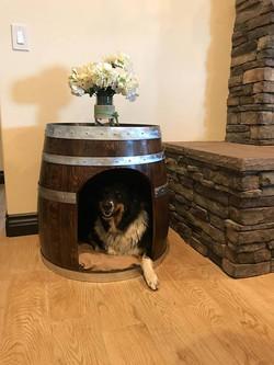 winebarreldoghouse4