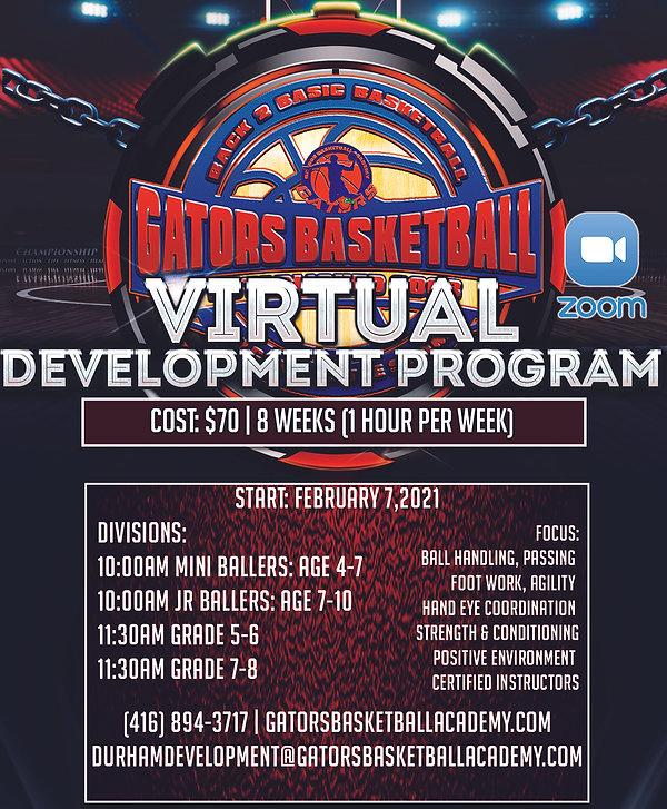 virtual development program.jpg