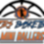 GATORS MINI BALLERS LOGO.png