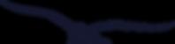 Website Assets - Bird.png