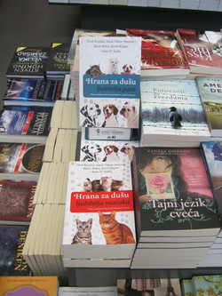 Book covers in bookstore