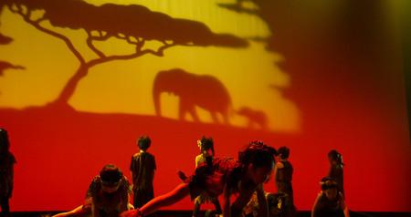 2020_Theater2 ライオンキング_9110.jpg