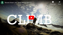 Dream Job 2015 Video