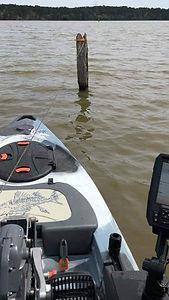 kayak hold.jpg