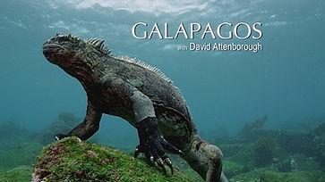 Galapagos3D_titlecard.jpg