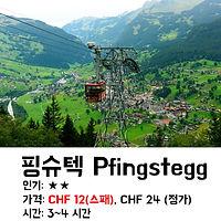 스위스인터라켄 그린델발트 핑슈텍 토보건 가격/가는방법 상세 설명