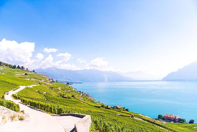 스위스 로잔 라보 Lavaux 포도밭에서 보는 레만호수