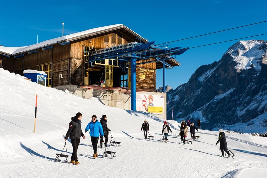 융프라우 눈썰매 그린델발트 피르스트 스위스여행 유럽여행