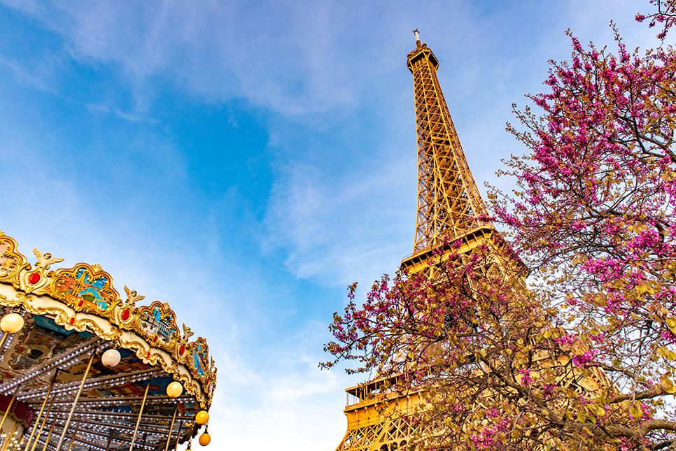 파리 에펠탑 벚꽃 프랑스여행 유럽여행