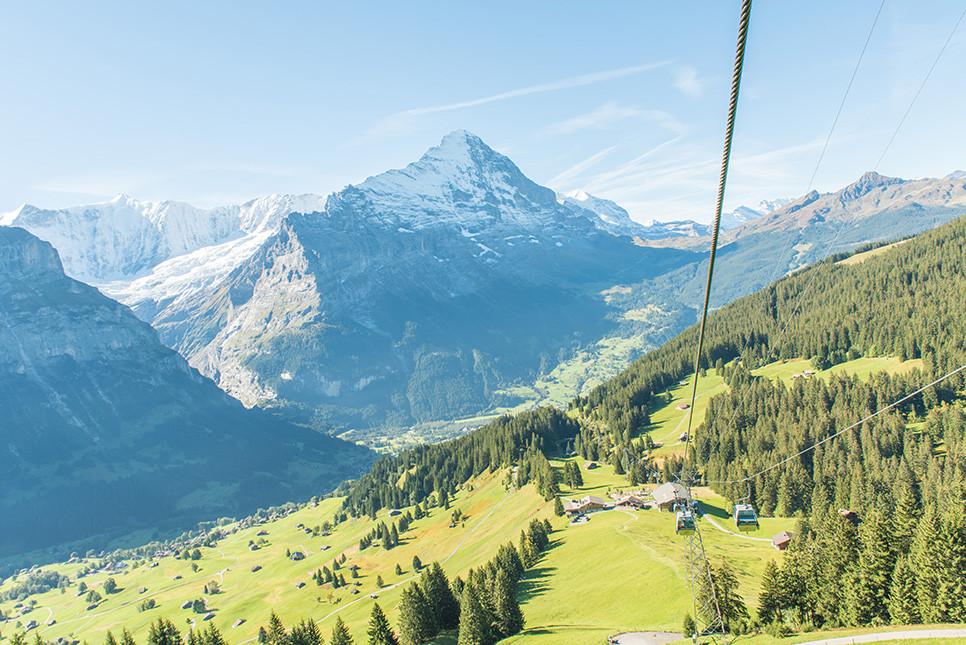 그린델발트 피르스트 곤돌라 스위스여행
