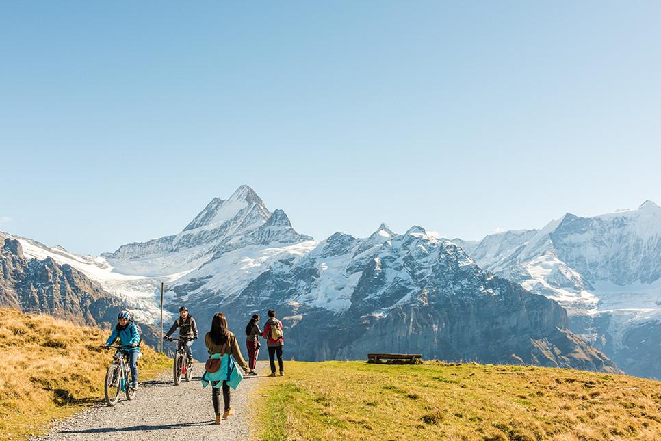 바흐알프제 그린델발트 피르스트 스위스여행 유럽여행