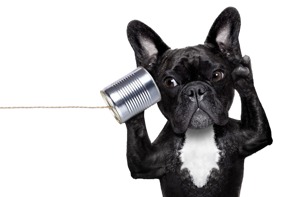 good listener, telephone