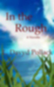 Florida writer books novellas short stories in the rough