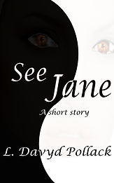 Florida writer books novellas short stories SJ