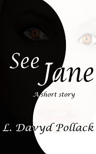 Florida writer books novellas short stories see jane