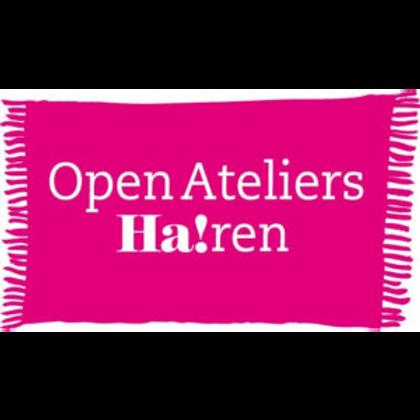 Overzichtsexpositie met werk van de deelnemers aan Open Ateliers Haren.