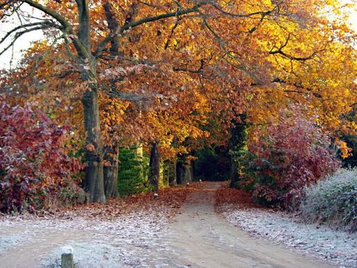 Plog 3. Van herfst naar winter