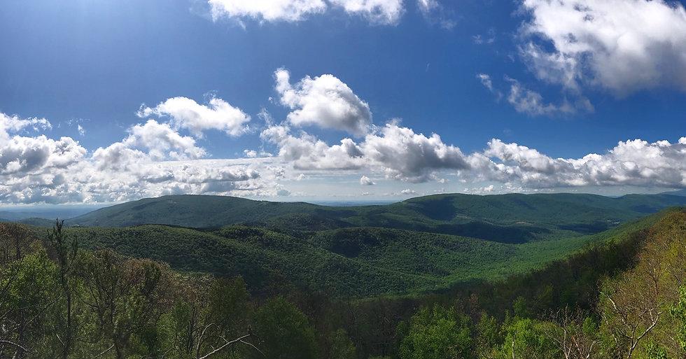 Turk Mountain.jpg