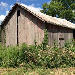 Timber Frame barn before restoration