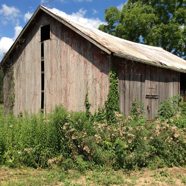 Timber Frame barn before restoration