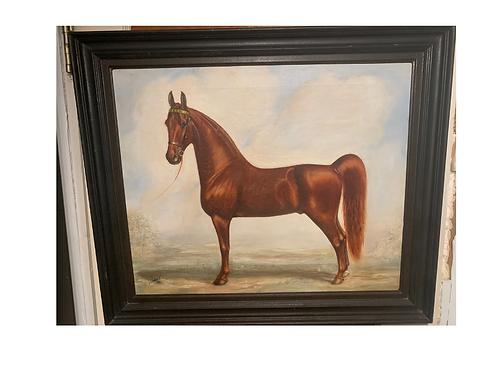 Wonderful painting of an Irish Connemara pony.