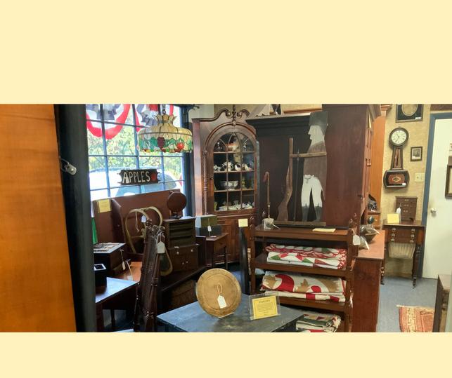 Ponzi's Antiques (7).png