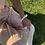 Thumbnail: Bracelet Alice