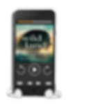 audiobook phone image.png