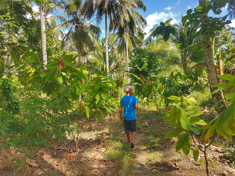 Dan Pedraza, takes us around his OPM enrolled farm during the ocular inspection.