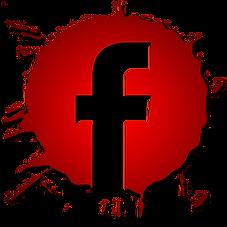 facebook orchestre SHOWYS