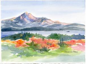 Autumn Mt. Baker 15/008