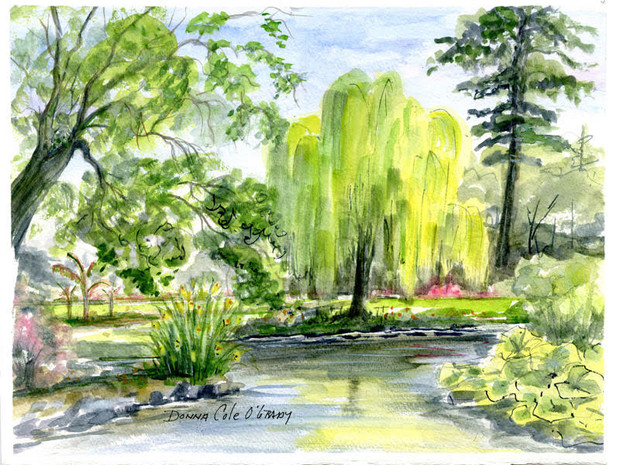 Spring, Beacon Hill Park 19/021
