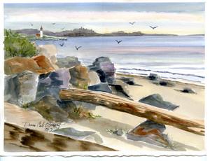 Shore & Fisgard 17/006