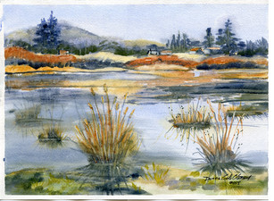 Icy Pond West Saanich 15/011